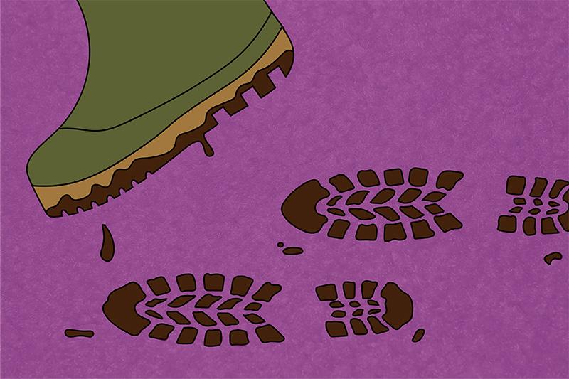 Carpet Stains: Natural Substances