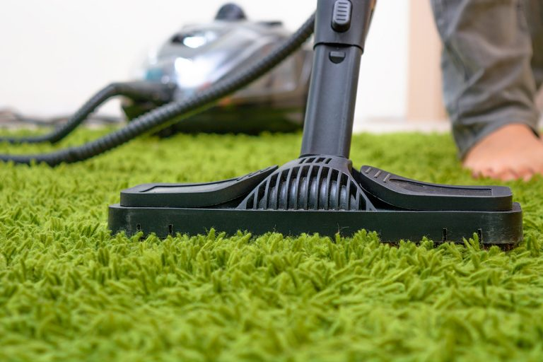Carpet Cleaning Guide